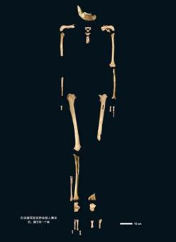 Esqueleto del Hombre de Tianyuan, de 40.000 años de antigüedad