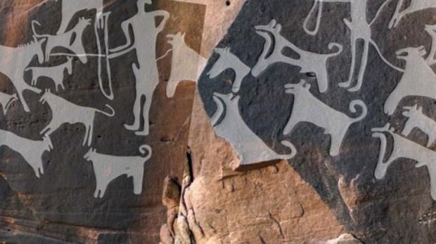 Paneles de Shuwaymis donde aparecen perros con correa