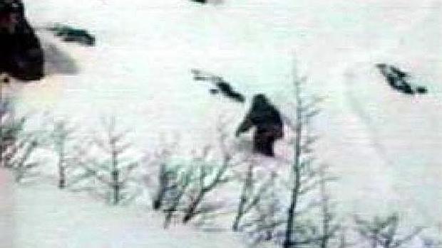 El misterio del Yeti, resuelto por el ADN: esto es en realidad