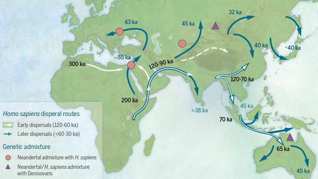 Confirman que el ser humano tiene varios orígenes africanos. Una revisión ha concluido que hubo una gran salida de África hace 60.000 años y otras menores que se remontan hasta los 130.000 [Historia] 157408-kG0F--620x349@abc