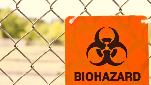 El virus de la viruela ha sido uno de los más letales de la historia pero se erradicó en 1980 gracias a las vacunas