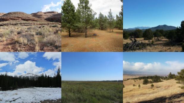 Comprender qué bacterias hay en cada suelo permite entender el funcionamiento de los ecosistemas y más adelante aumentar la fertilidad del campo o luchar contra el cambio climático