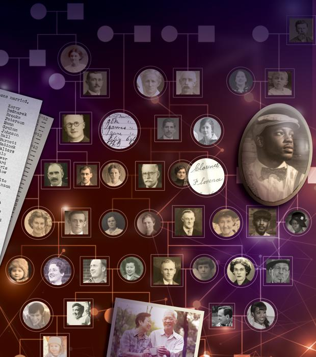 El árbol genealógico recoge 500 años de relaciones familiares