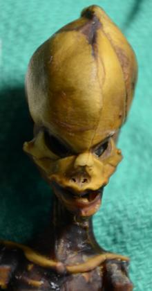 El cráneo cónico de la momia