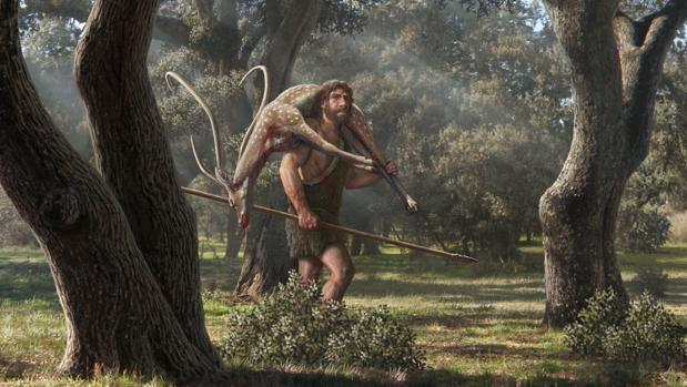 Los neandertales cazaban en zonas boscosas, para lo que empleaban estrategias complejas