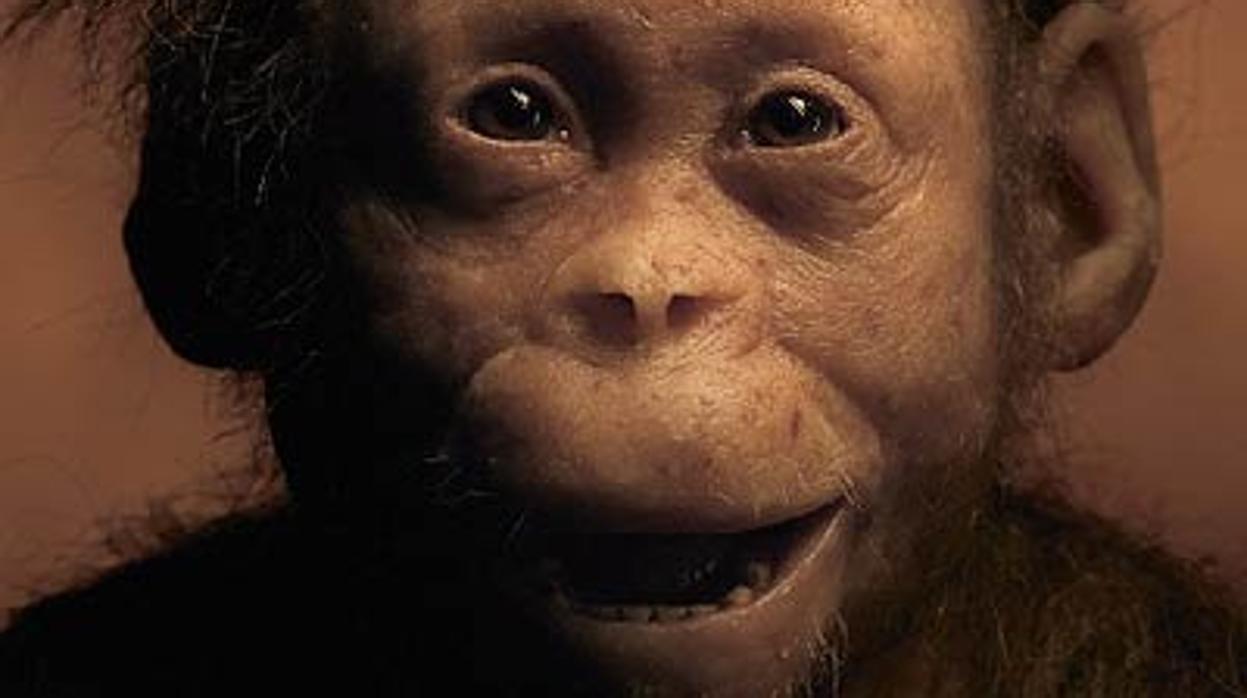 Así vivía «Selam», la «niña» más antigua del mundo