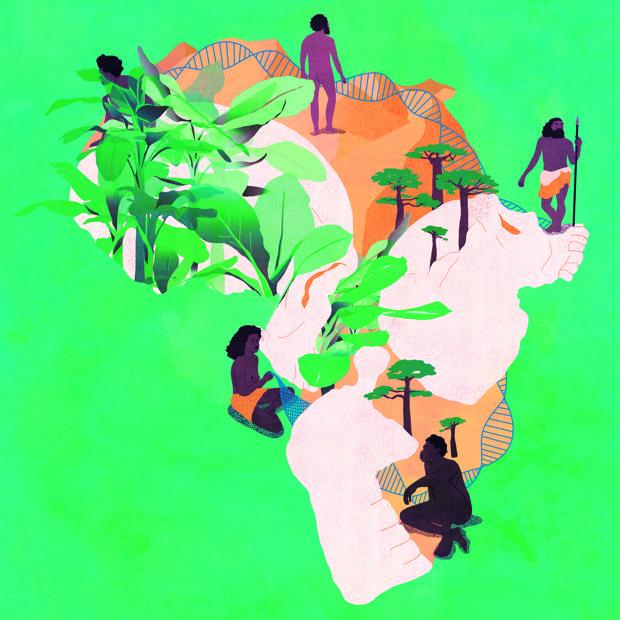 El mosaico de fósiles, artefactos y ambientes en toda África indica que nuestra especie surgió de las interacciones entre un conjunto de poblaciones cuya conectividad cambió a través del tiempo