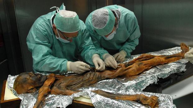 Investigadores toman muestras del contenido estomacal de la momia