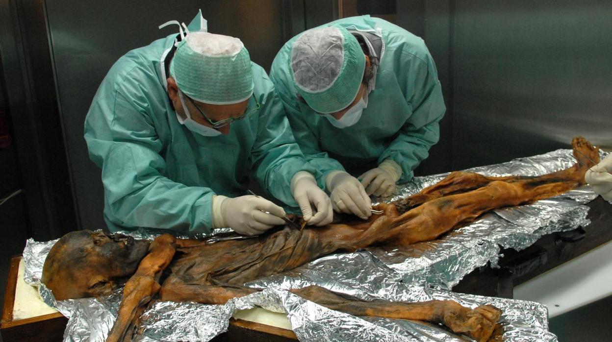 Diez impresionantes descubrimientos sobre Ötzi, el «hombre de hielo»