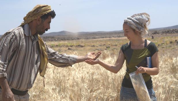 Descubren en Jordania el pan más antiguo del mundo