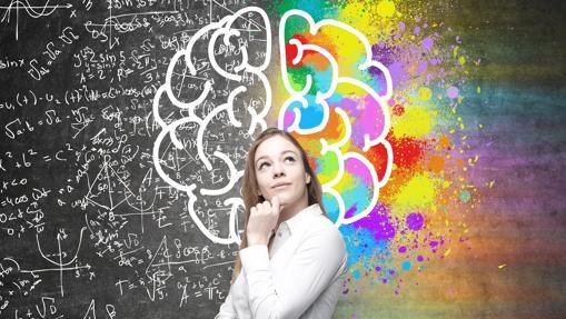 Según el mito, la mitad del cerebro es mucho más aburrida que la otra