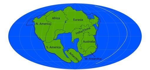 Pangea Última