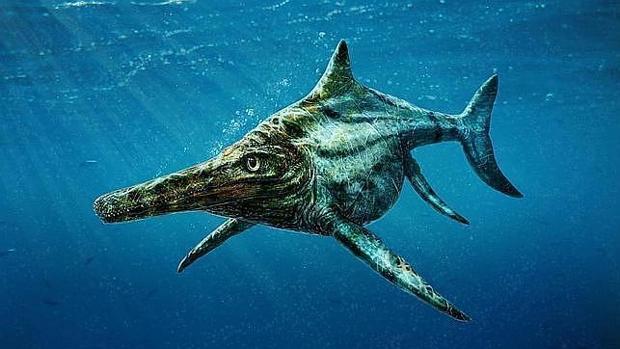 Los ictiosaurios tenían un aspecto parecido al de los delfines actuales