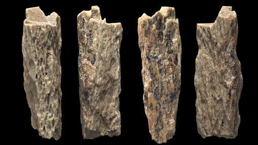 Los investigadores extrajeron ADN antiguo de un fragmento de hueso