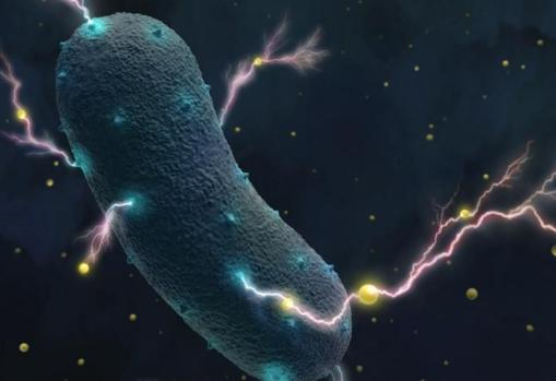 Representation of bacteria, releasing electrons from metal particles from the environment.