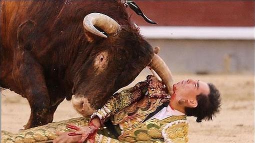 El pitón atraviesa el cuello de Jiménez Fortes, en una imagen escalofriante