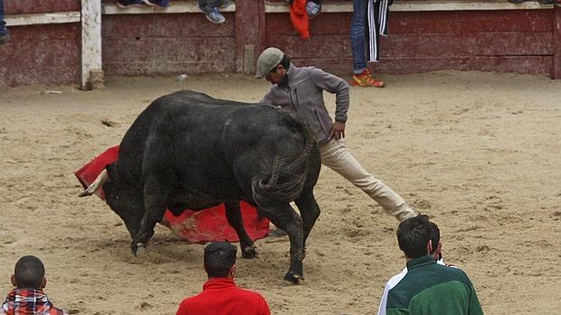 Sebastián Castillo, en el Carnaval del Toro de Ciudad Rodrigo