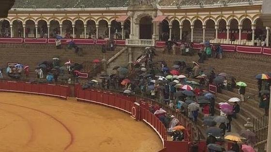 Paraguas en los tendidos