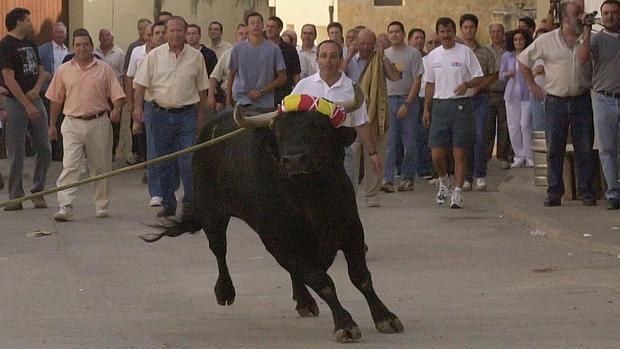 Fiestas del toro ensogaDo
