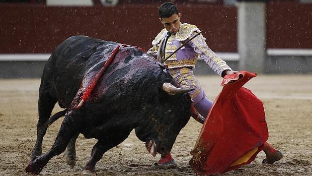 Ureña echa la pata «p'alante» y, pese a la cornada, toreará este domingo en San Isidro