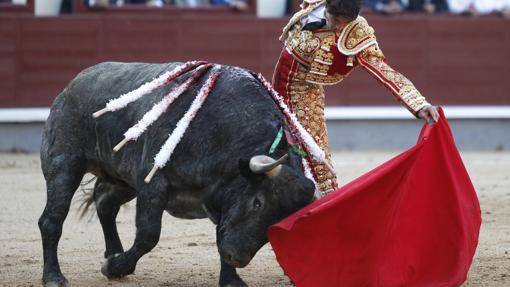 Castella toreó cuatro corridas, una de ellas la de Adolfo, donde lentificó el natural