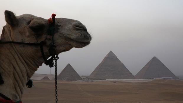 Las pirámides de Giza, en 2014
