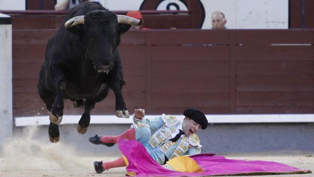 Juan Carlos Carballo, tras ser pisoteado por el último novillo, que salta por encima del torero