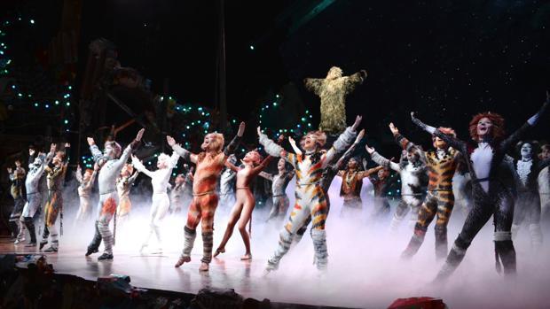 """El Musical """"Cats"""" regresa a Broadway"""