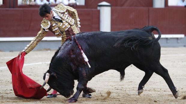 Miguel Palacios, en un derechazo con el novillo metiendo la cara