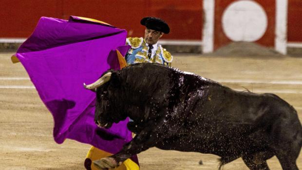 Enrique Ponce, el pasado agosto en la plaza de toros de Palma de Mallorca