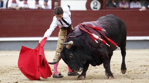 Robleño, con el primer toro