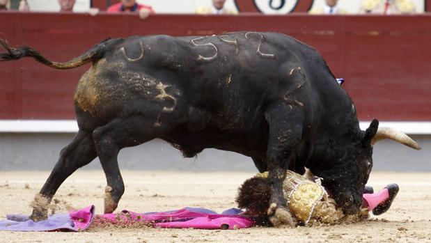 Fernando Robleño, a merced del toro de Palha tras ser cogido a portagayola