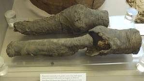¿Son estas las piernas de Nefertari?