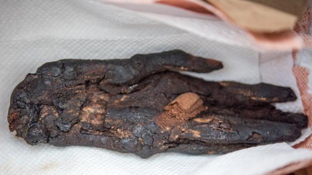 Entre las piezas que Estados Unidos ha devuelto a Egipto está una mano momificada, de más de 3.000 años