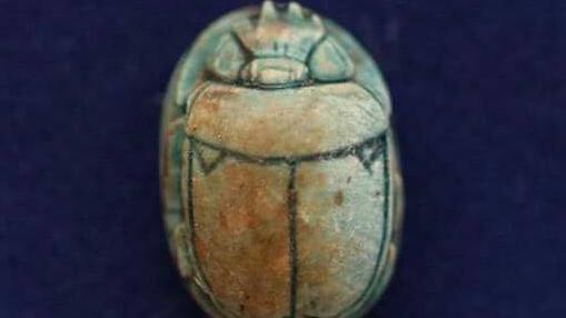 Uno de los escarafeos hallados