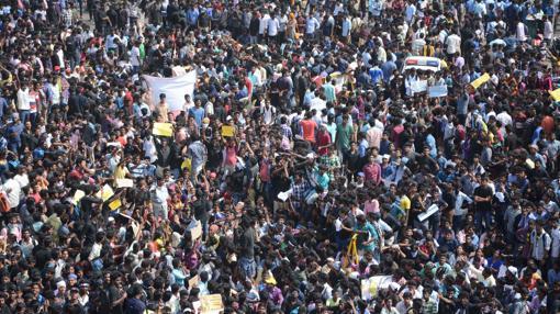 Multitudinaria manifesatación en el estado de Tamil Nadu en defensa de los espectáculos taurinos