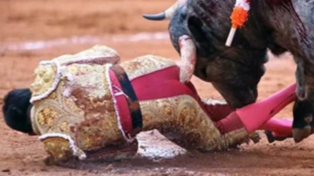 El pitón penetra en el ano de Antonio Romero en una imagen escalofriante