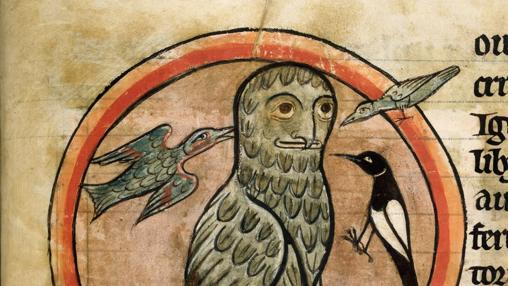 Imagen del Bestiario de Salisbury