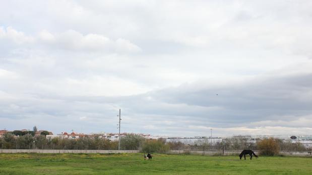 Fotografía de los entornos del C3A, de José Jurado