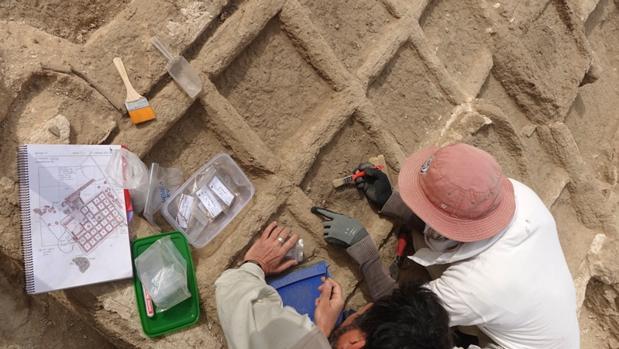 El jardín funerario se divide en pequeñas parcelas de 30cm, donde se ha encontrado una capa de limo