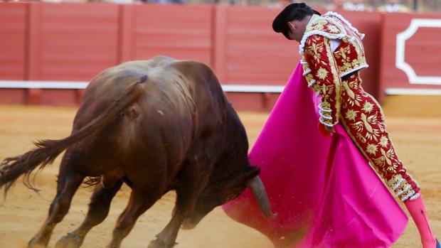 Antonio Ferrera bordó el toreo a la verónica en el quinto toro