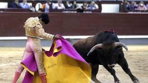Los partidos han presentado una porposición de ley de «regulación de las corridas de toros en Baleares»