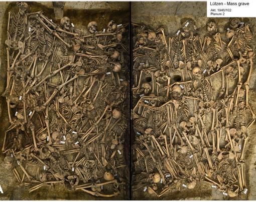 Así es la fosa común que fue trasladada de dos piezas al Museo Estatal de Prehistoria de Halle