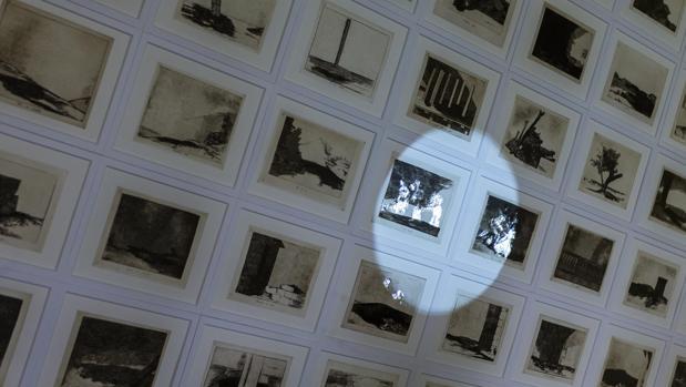 Imagen en sala de «Cuando cuento estás solo tú… pero cuando miro hay solo una sombra», de Farideh Lashai