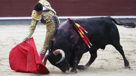 Miguel Ángel Perera, en un derechazo de mano baja