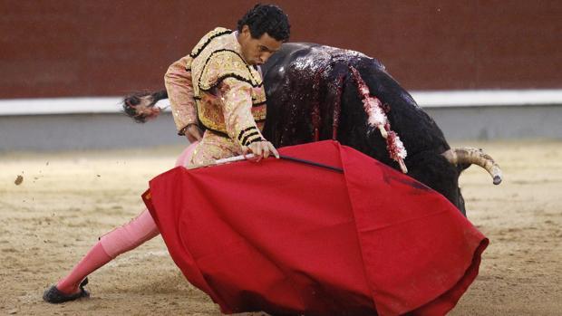 Iván Vicente se dobla con el toro