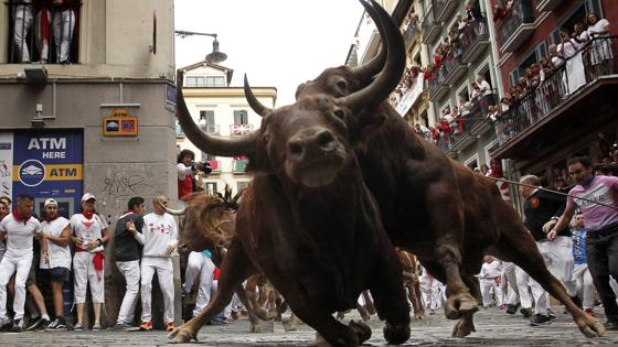 Impresionante imagen de dos toros castaños en el encierro