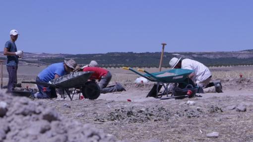 Peones y arqueólogos trabajan en una de las catas abiertas