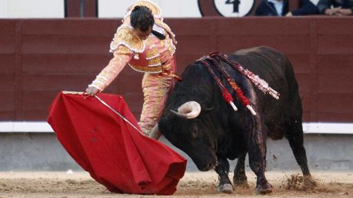Fandiño, el 15 de mayo de 2015 en Madrid, en un ajustadísimo derechazo, ciñéndose la muerte a la cintura