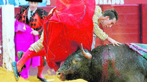 Fortes es cogido por su cuarto toro al entrar a matar
